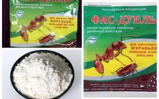 Līdzekļi no prusaku: tabletes, gēls un pulveris
