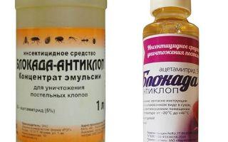 Blokāde Anti-bugs no bedbugs