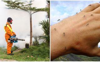 Līdzekļi apgabala apstrādei no odiem un ērcēm
