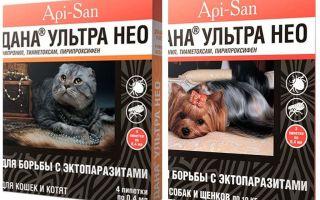 Dana Ultra Neo pilieni no blusām kaķiem un suņiem