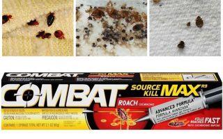 Līdzekļi Kombat no bedbugs