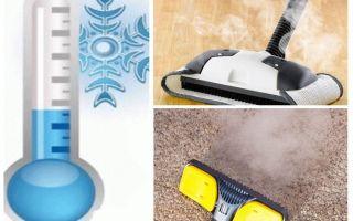 Kā atbrīvoties no paklāju blusām insekticīdiem un improvizētiem līdzekļiem