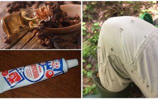 Tautas aizsardzības līdzekļi odiem