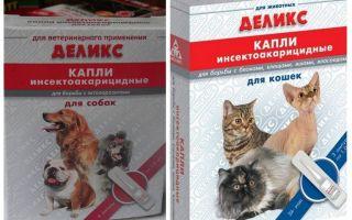 Delicious blusu pilieni kaķiem un suņiem