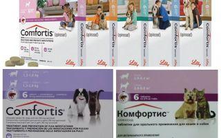Blusu tabletes suņiem un kaķiem