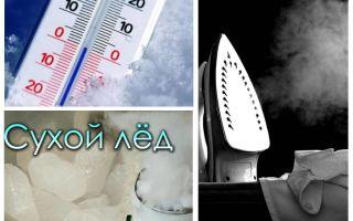 Kādā temperatūrā prāmji un to kāpuri mirst?