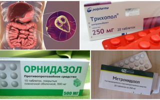 Labākās zāles Giardia ārstēšanai pieaugušajiem