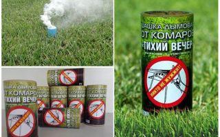 Labākie dūmu pārbaudītāji odiem