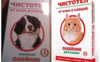 Blusu strutene apkakle kaķiem un suņiem