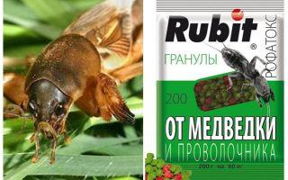 Samazina Rofatoks granulas no medvedkas un wireworm