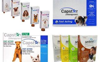 Tabletes blusām un ērcēm suņiem